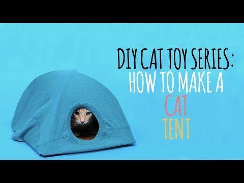 Une tente pour chat amusante et simple à faire