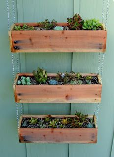 Succulent Tutorial - Tiered Hanging Planter Boxes