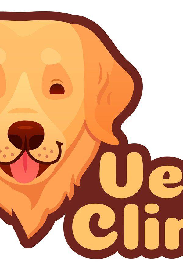 Vet Clinic And Veterinary Logo With Dog Face Pet Health Car 1018979 Characters Design Bundles Dog Face Vet Clinics Pet Health