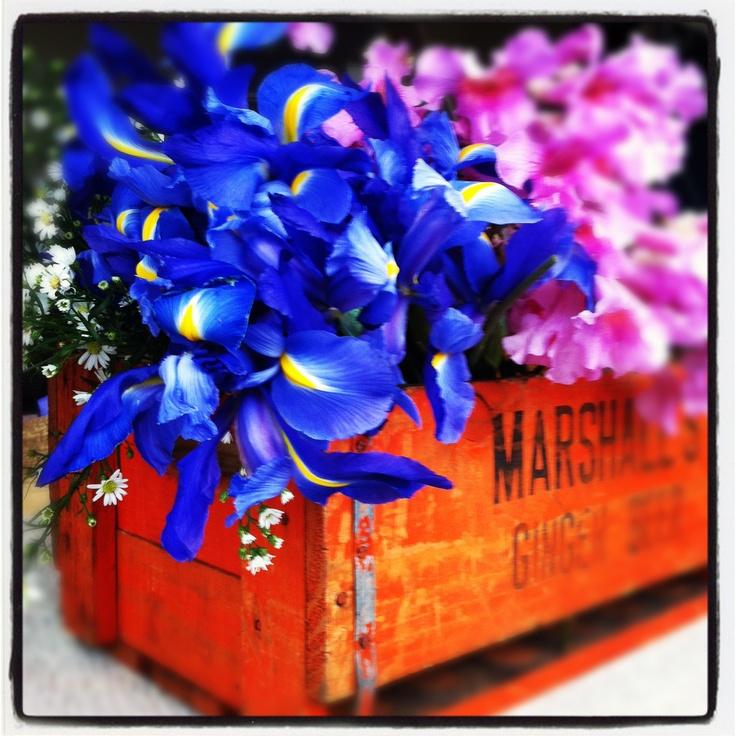 Some beautiful Irises I arranged for a market stall. www.lo-studio.biz  http://www.facebook.com/lostudiopage