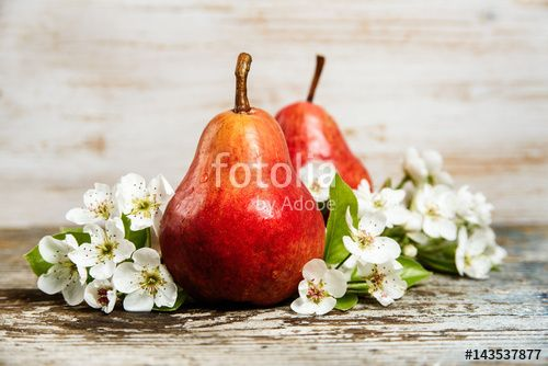 Pear fruits and flower blossom leaf sprig on wooden background