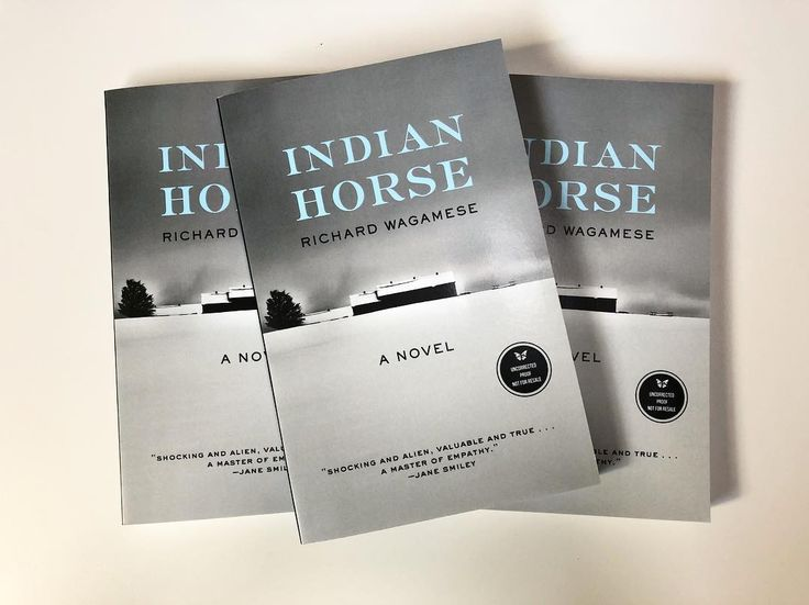 the representation of society in the novel indian horse by richard wagamese Wagamese's novel depicts the tragedies of residential schools (although they were more like child labor camps than schools) in the 1960s to '70s through the life of saul indian horse, a young first nations boy who escapes the horrors of the school through his passion for hockey--electric literature.