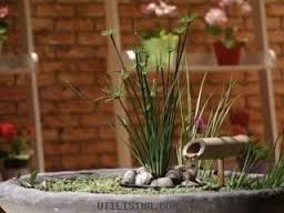 595 best images about jardineria on pinterest gardens - Jardineria en casa ...