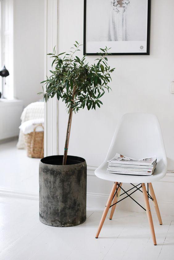 Dicas para a decoração de casa: Cadeiras Eames. Se for a branca, melhor ainda. Se tiver um pelego, revistas ou plantas por perto, sucesso.