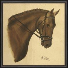 Bay horse framed print