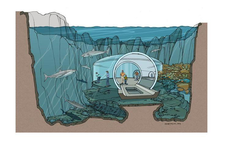 Peru National Aquarium by Studio Hanson | Roberts
