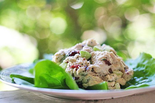 Tarrgon chicken salad recipe, with chopped chicken, dried cranberries, celery, mayonnaise, and either dried or chopped fresh tarragon. Great for sandwiches too.