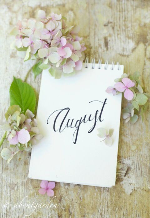 Thank you Kim for our great theme yesterday.  Today let's do August. What you love about this month.