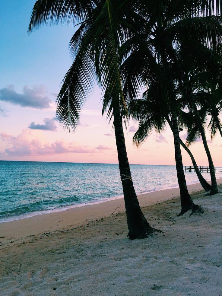Bahamas. Kryssning till Bahamas, St. Martin, St. Thomas och Fort Lauderdale för ca 13 000 kr per person inklusive flyg. https://www.ving.se/kryssningar/karibien/ostra-karibien-70473?tdmRuleId=84#/detail2/1/84/STO/20171014/42,42/3741655/true/-/-/-/-1 eller https://www.ving.se/kryssningar/karibien/ostra-karibien-96182?tdmRuleId=672#/detail2/1/672/STO/20170930/42,42/3742239/true/-/-/-/-1
