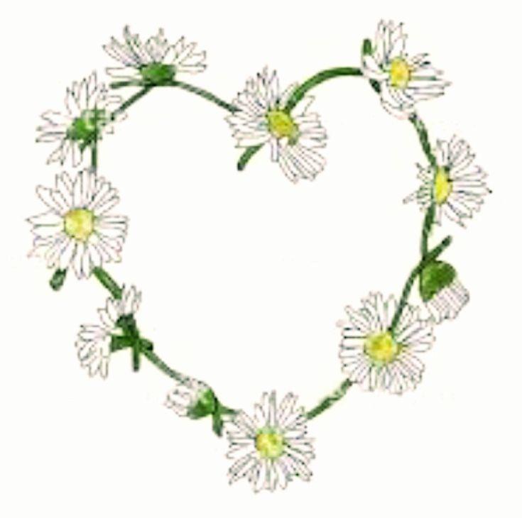 Heart Daisy Tattoo: The 25+ Best Daisy Chain Tattoo Ideas On Pinterest
