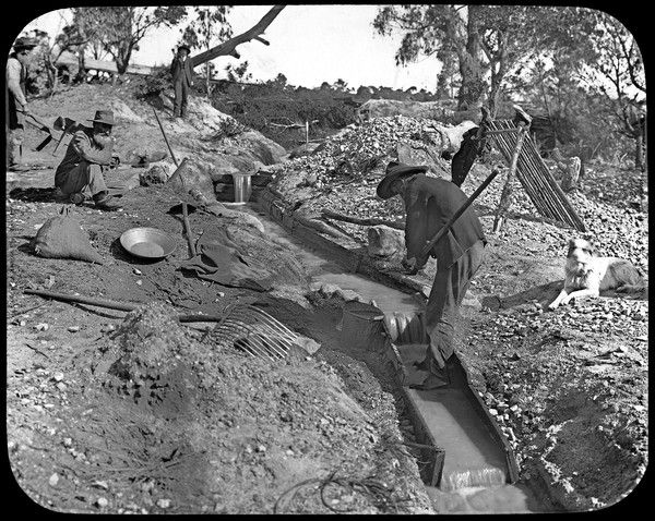 #ThrowbackThursday: Miners tin sluicing in the old Vegetable Creek at Emmaville, New England, #NSW