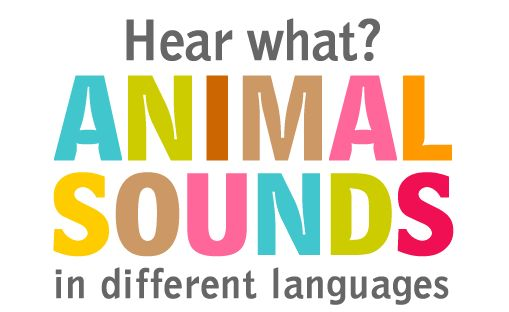 All around the world, animal sounds are being heard in the language of the animal's region or country.  A dog's bark or a cat's meow in Canada may be understood as a completely different sound or word in Turkey or China.