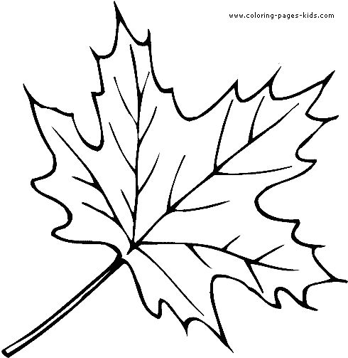 nature Outlines to Print | Leaf color page, coloring pages, color plate, coloring sheet,printable ...