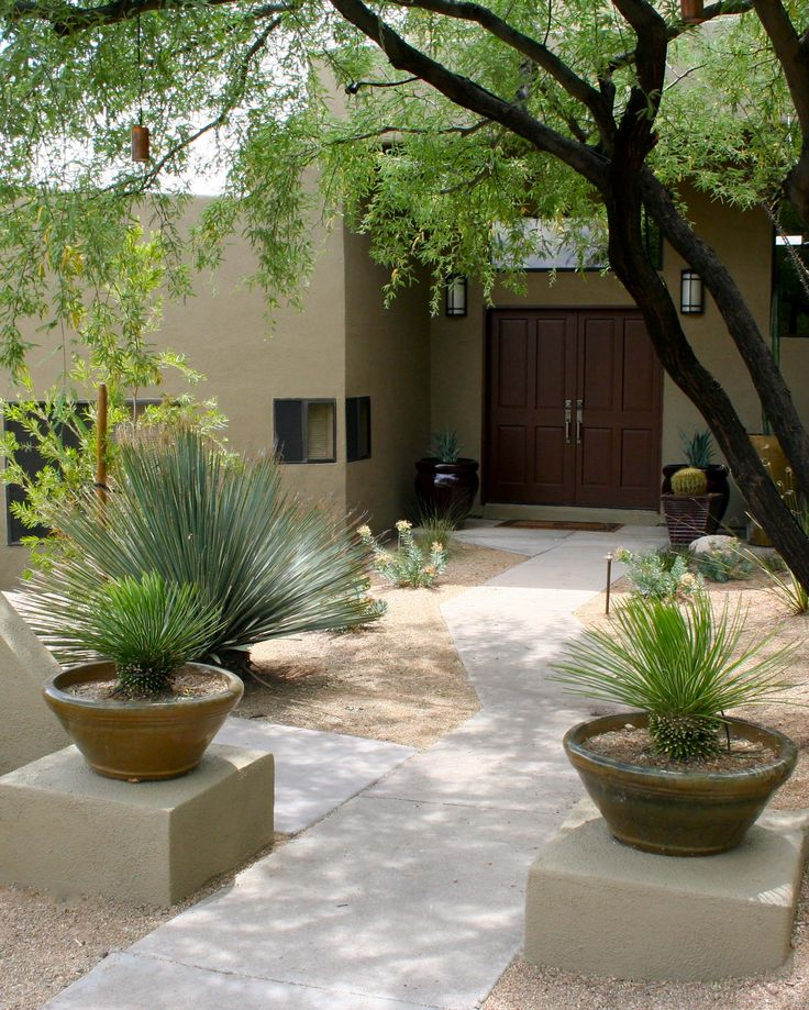 Desert Designs Front Yard: 17 Best Images About Focal Points & Features On Pinterest