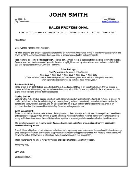 sales professional resume template