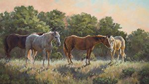Warm Rays by Shawn Cameron in the FASO Daily Art Show