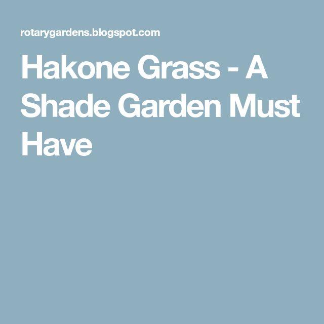 Hakone Grass - A Shade Garden Must Have