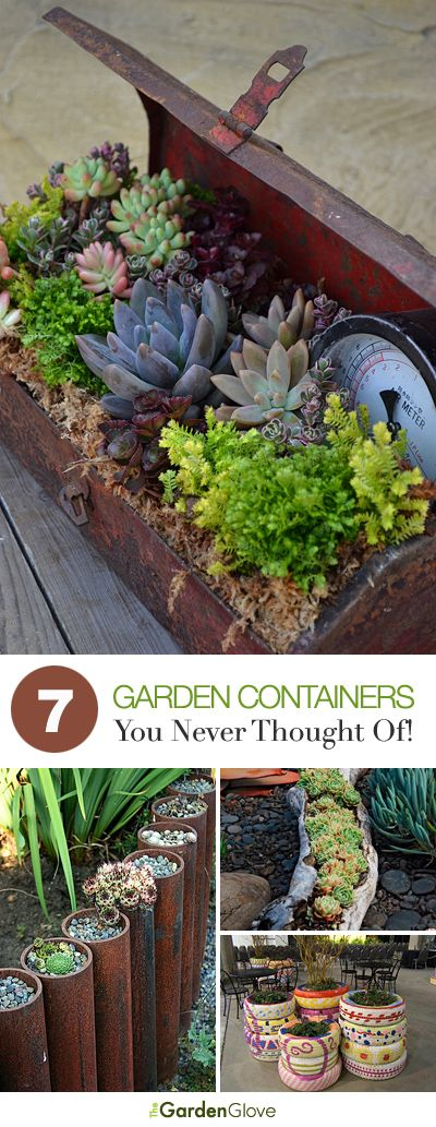 Easy Container Gardening • 7 Containers You Never Thought Of • Tips  Ideas! http://www.pinterest.com/cupcakesgarden/