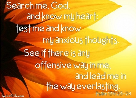 Search Me GodPsalms 139 23 24, Psalms 1392324, Inspiration, God, Quotes, Faith, Psalms 23, Sun Flower, Canvas