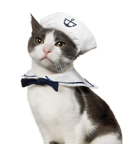 #RLWDDogCostumes: Cat Dog Sailor Costume Hat Navy Tie. View details at http://realifewebdesigns.com/web-store/details/?B00LY2QQLA