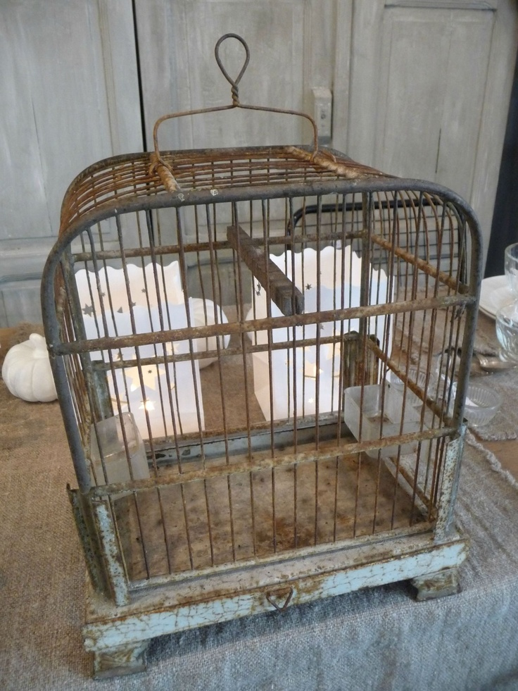Bird Cages, Patio Ideas, Birdhouses, Prison, French Country, Patios, Shabby  Chic, Nests, Little Birds