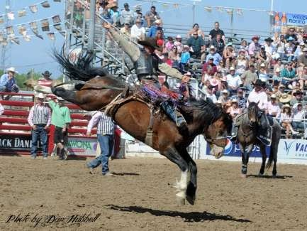 58 Best Images About Saddle Bronc Riding On Pinterest