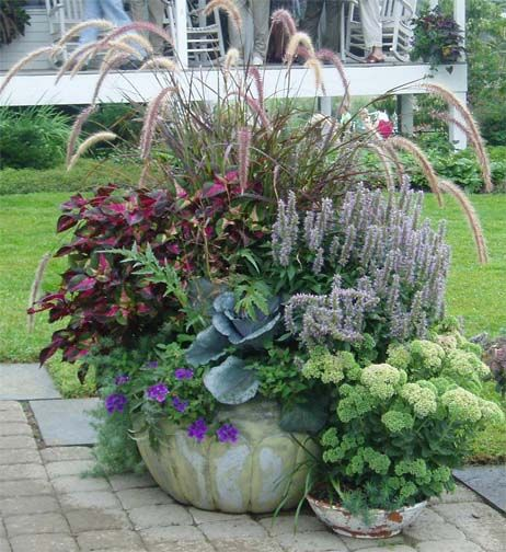 Reilly's Container Planting Ideas Page