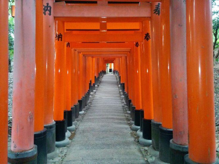 Kyoto f