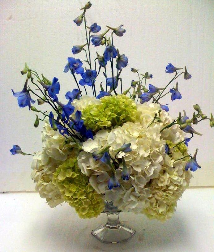 Centerpiece of white and green #hydrangea and dark blue #delephinium