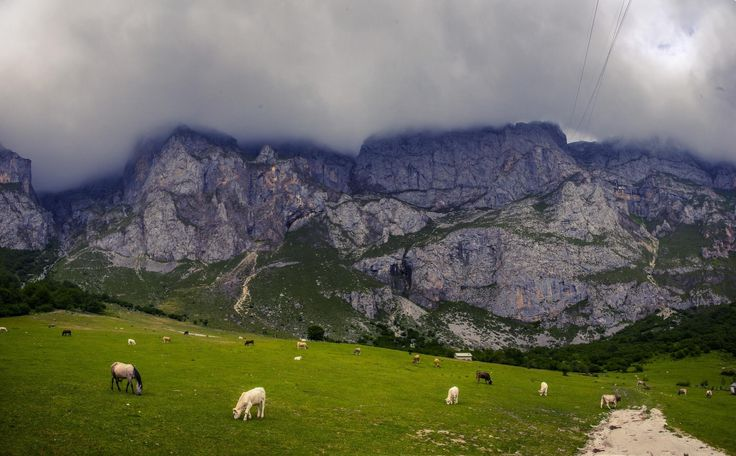Took a treacherous hike to the balcony of my hotel room in the Picos de Europa but the prize was worth it [OC] [2048x1270]