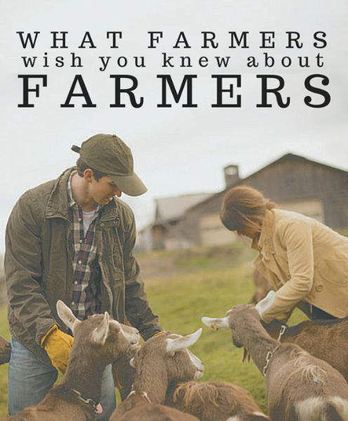 From 'farming is easy' to 'farmers are rich,' there are a  million things consumers think they know about farmers. Here's what  farmers wish you knew!