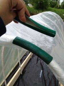 """This is about making a 'PolyTunnel' to grow tomatoes, but I like the idea of using pieces from an old hose to secure plastic on a PVC pipe den ("""",)"""