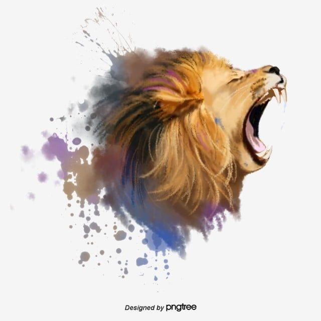 Roaring Lion Roaring Splash Elements Lion King Clipart Element Fierce Png Transparent Clipart Image And Psd File For Free Download Lion Clipart Roaring Lion Animal Clipart