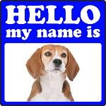 Top 100 Most Popular Dog Names - Best Male & Female Dog Names