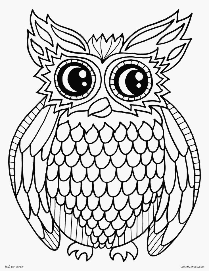 Colored Coloring Pages For Adults Already Owl Creative ...
