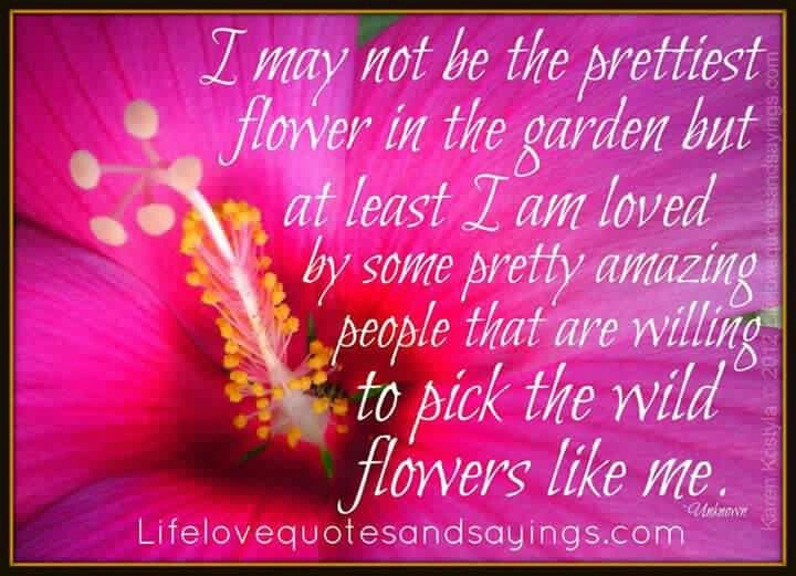 89 best favorites images on pinterest funny images funny photos discover and share flower quotations quotes explore our collection of motivational and famous quotes by authors you know and love mightylinksfo