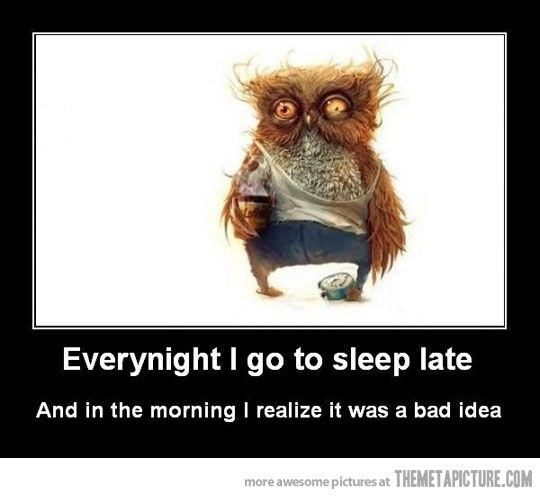 Always a bad idea...Beds, Lady Night, Funny Humor, Mondays Mornings, Night Owls, Funny Quotes, Funny Stuff, Humor Quotes, True Stories