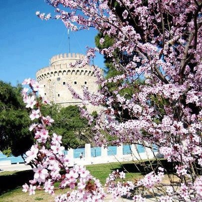 Thessaloniki,Greece in spring: I've been here and it looks this beautiful all year round.