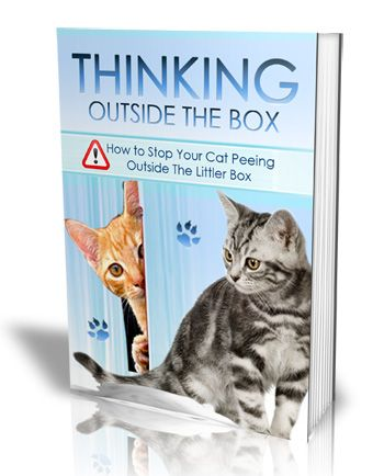 Cat Peeing All Over The Place? MAKE IT STOP! WIth This Guide You Will Have  Your Cat Trained To ONLY Go Where It Should In 4 Days Or Less   Guaranteed.