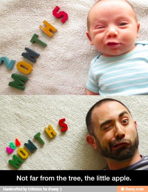 Not far from the tree, the little apple / iFunny :) cute pic idea