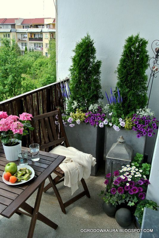 Galvanised planters, wooden table.