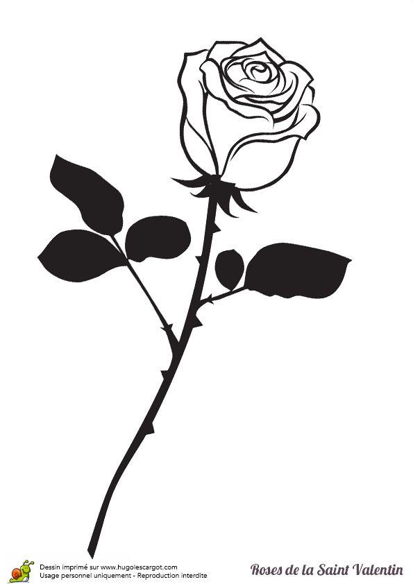 Les 131 meilleures images du tableau coloriages pour les - Rose avec tige ...