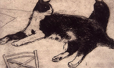 Fred Black and White Cat -Elizabeth Blackadder