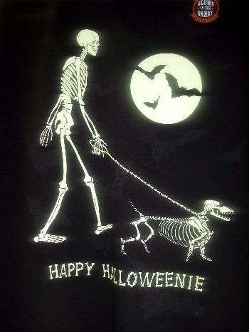 The Long and Short of it All: A Dachshund Dog News Magazine: Just In Time For Halloweenie