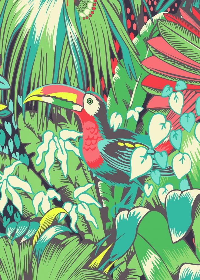 Close up of the Toucan Print. Based on a detail from our wallpaper print 'Jungle Beat', this card depicts dense jungle in rich colours.