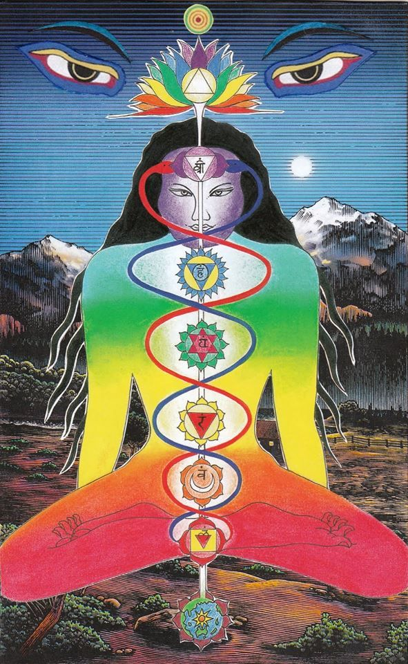"astrologyreadings:  NadisIn addition to the seven chakras of the subtle body, the Tantras have described a network of subtle channels known as nadis through which the life force (prana) circulate. Nadi means ""stream"". According to the tantric treatise Shiva Samhita, there are fourteen principal nadis."