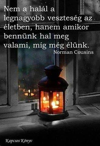 Norman Cousins gondolata a veszteségről. A kép forrása: Kapcsos könyv