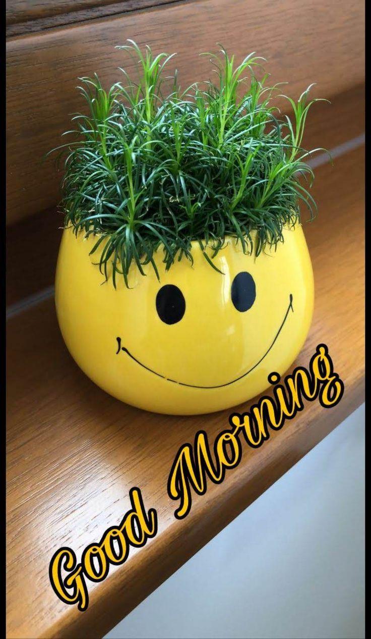Картинка с добрым утром улыбайся