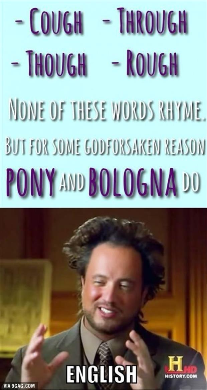 aa9edaa1759c4d8185987fa51a44544b learn english english class 127 best j) meme comic funny sayings images on pinterest funny,Bologna Meme