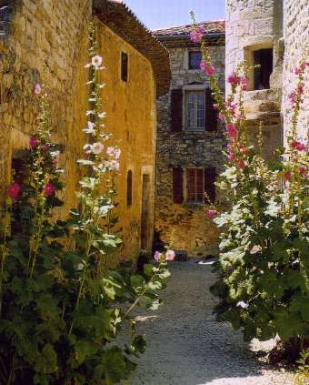 Les 381 meilleures images du tableau Au jardin ... les roses ...